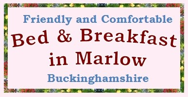 Friendly and comfortable Bed and Breakfast in Marlow